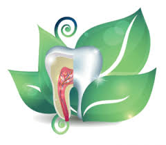 Jeffrey S Tatarin DDS Holistic and biological family dentistry Centennial Colorado.